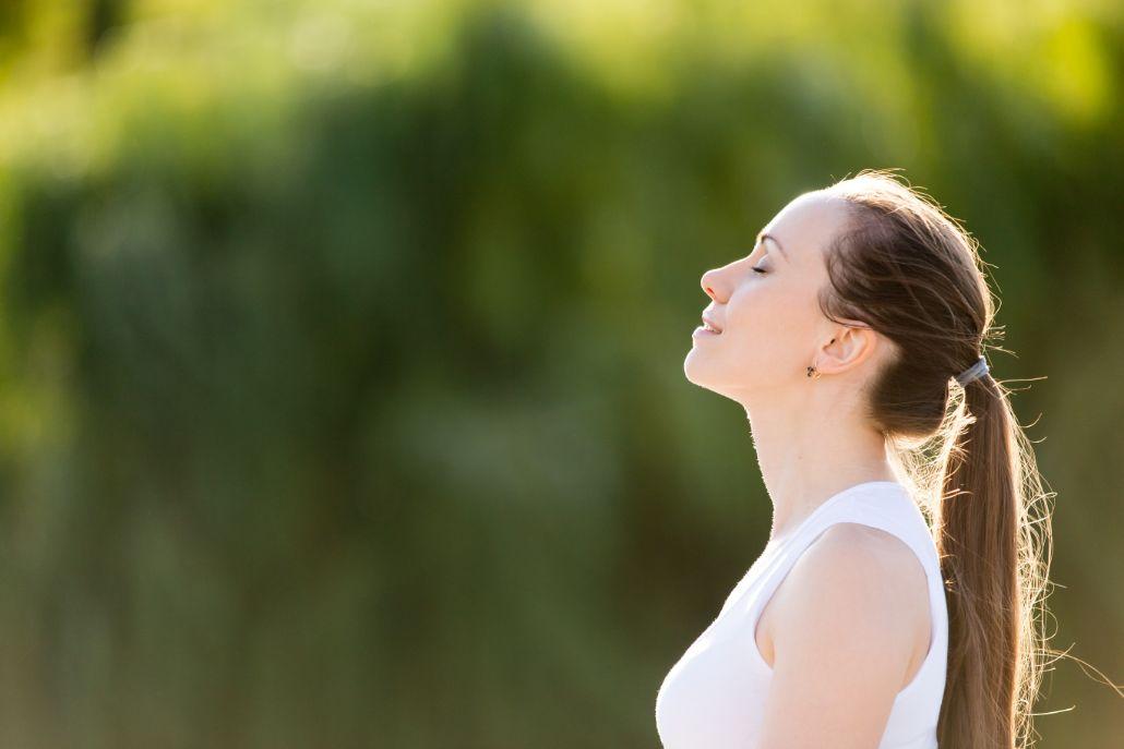 Meditierende im Grünen